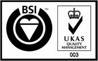 Kite Mark British Standard - Quality Managenmebr Logo
